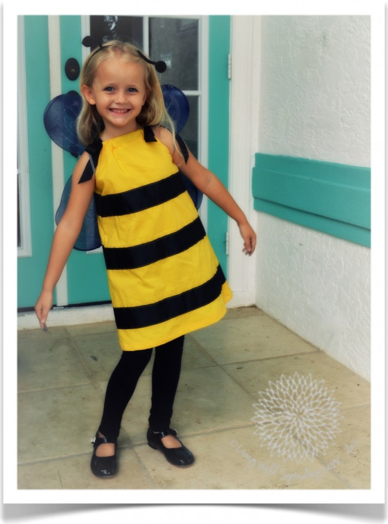 Homemade bee costume