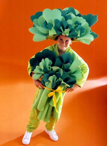 diy veggie costume for kids